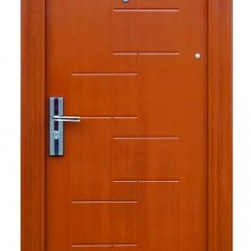 Ocelové dveře FX-S064 vchodové ocelové dveře,stavební otvor 205x96cm a stavební otvor 205x86cm