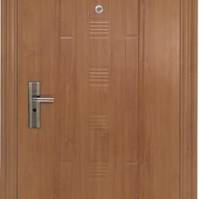 Ocelové dveře PP-A-01 ZF8 vchodové ocelové dveře,stavební otvor 205x96cm