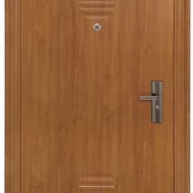 Ocelové dveře PP-A-02 ZF12 vchodové ocelové dveře,stavební otvor 205x96cm