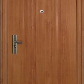 Ocelové dveře PP-A-06 ZF12 vchodové ocelové dveře,stavební otvor 205x96cm
