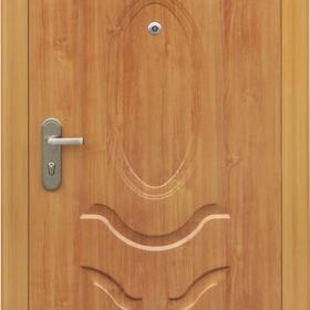 Ocelové dveře PP1D106Q51vchodové ocelové dveře,stavební otvor 205x96cm