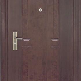 Ocelové dveře PP1D115Z31vchodové ocelové dveře,stavební otvor 205x96cm