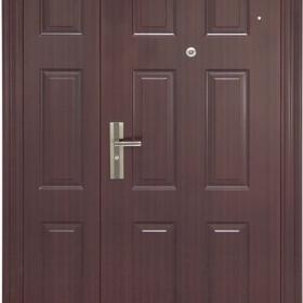 Ocelové dveře PP2D201Z31vchodové ocelové dveře, stavební otvor 205x120cm
